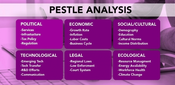 PESTLE Analysis – Focus on Politics