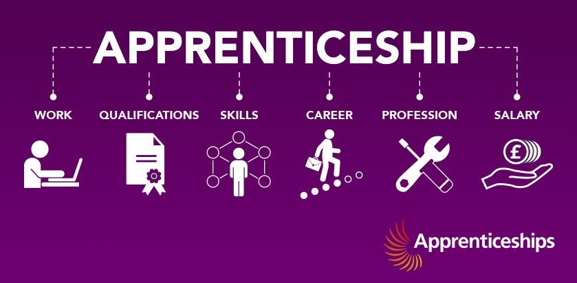 Public Sector Apprenticeships