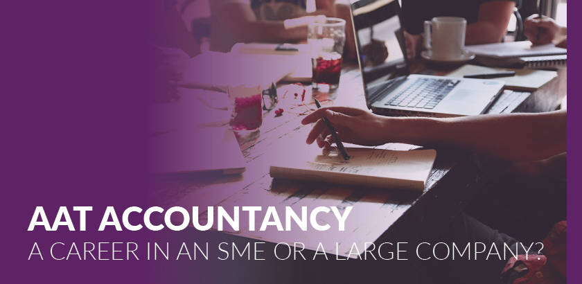 AAT Accountancy: Should I work in an SME or a large company?
